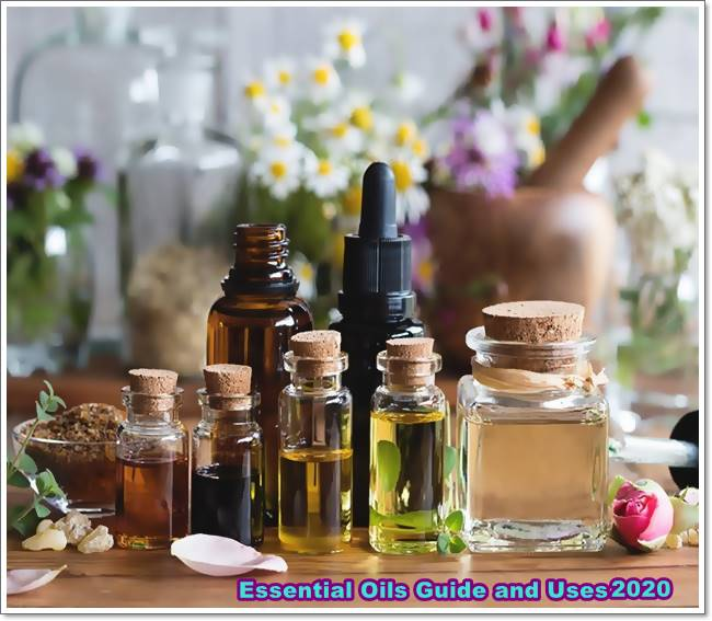 Essential Oils Guide and Uses