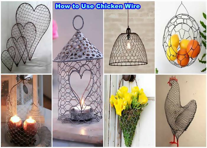 how to use chicken wire