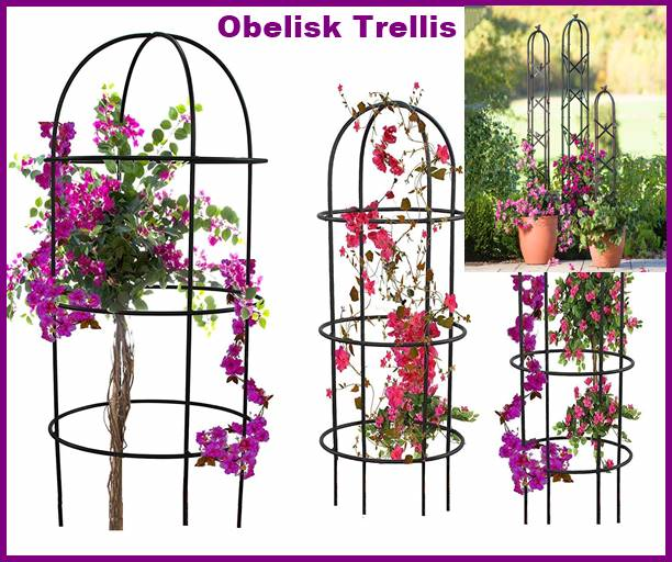 Obelisk Trellis