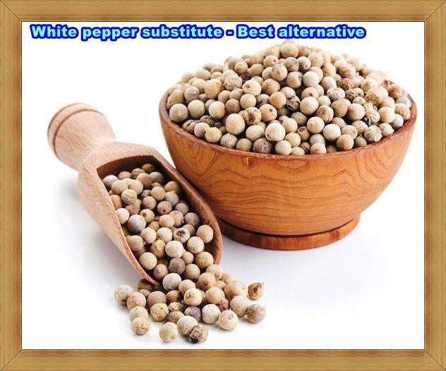 White pepper substitute - Best alternative