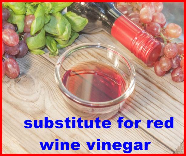 substitute for red wine vinegar