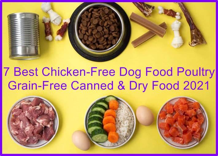 Chicken-Free Dog Food
