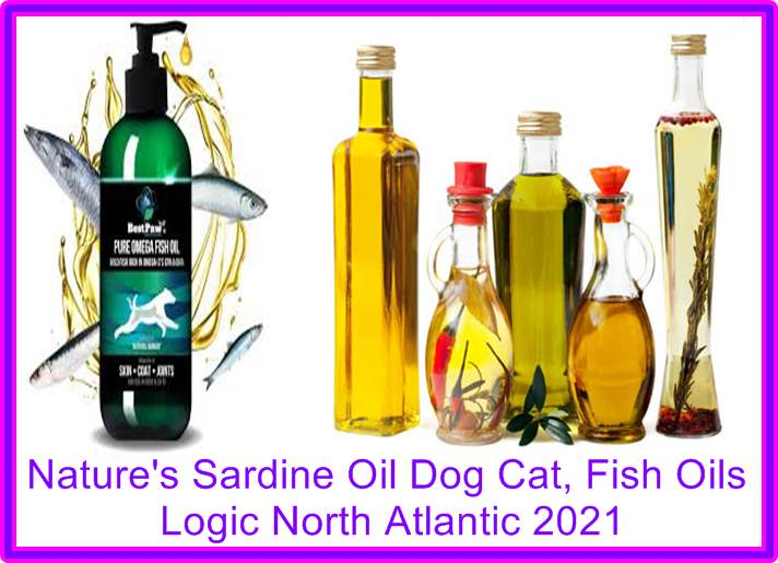 Sardine Oil
